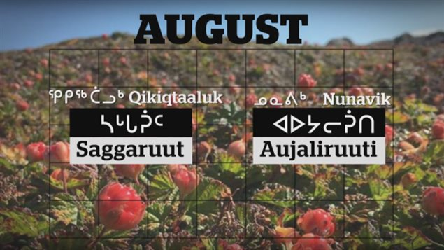 12-mois-langue-inuite-calendrier-nord-canada-7