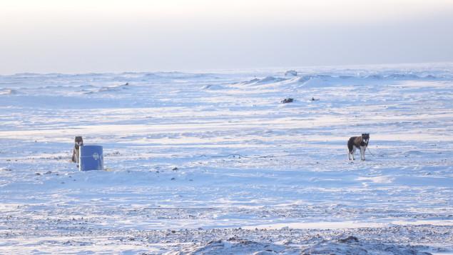 resolute-bay-communautes-plus-nordiques-canada-11-photos-4