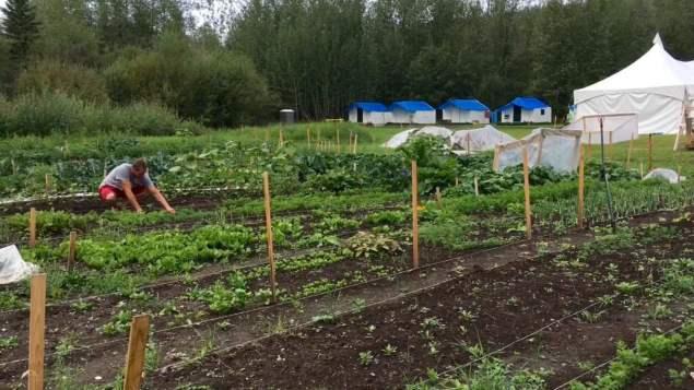 une-ferme-ecole-pour-les-trondek-hwechin-du-yukon
