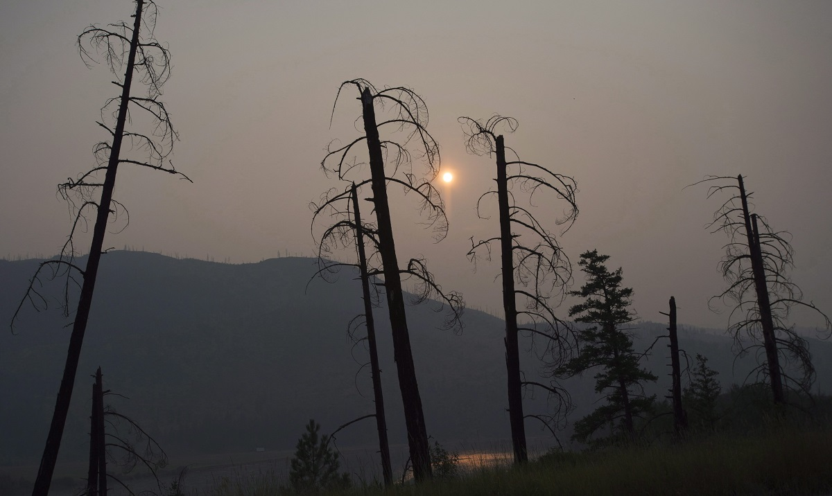 comprendre-limpact-des-feux-de-foret-sur-les-communautes-autochtones-du-canada