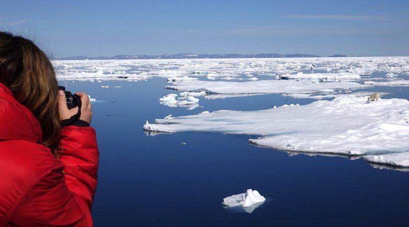 les-changements-climatiques-bouleversent-lhabitat-des-ours-polaires-7