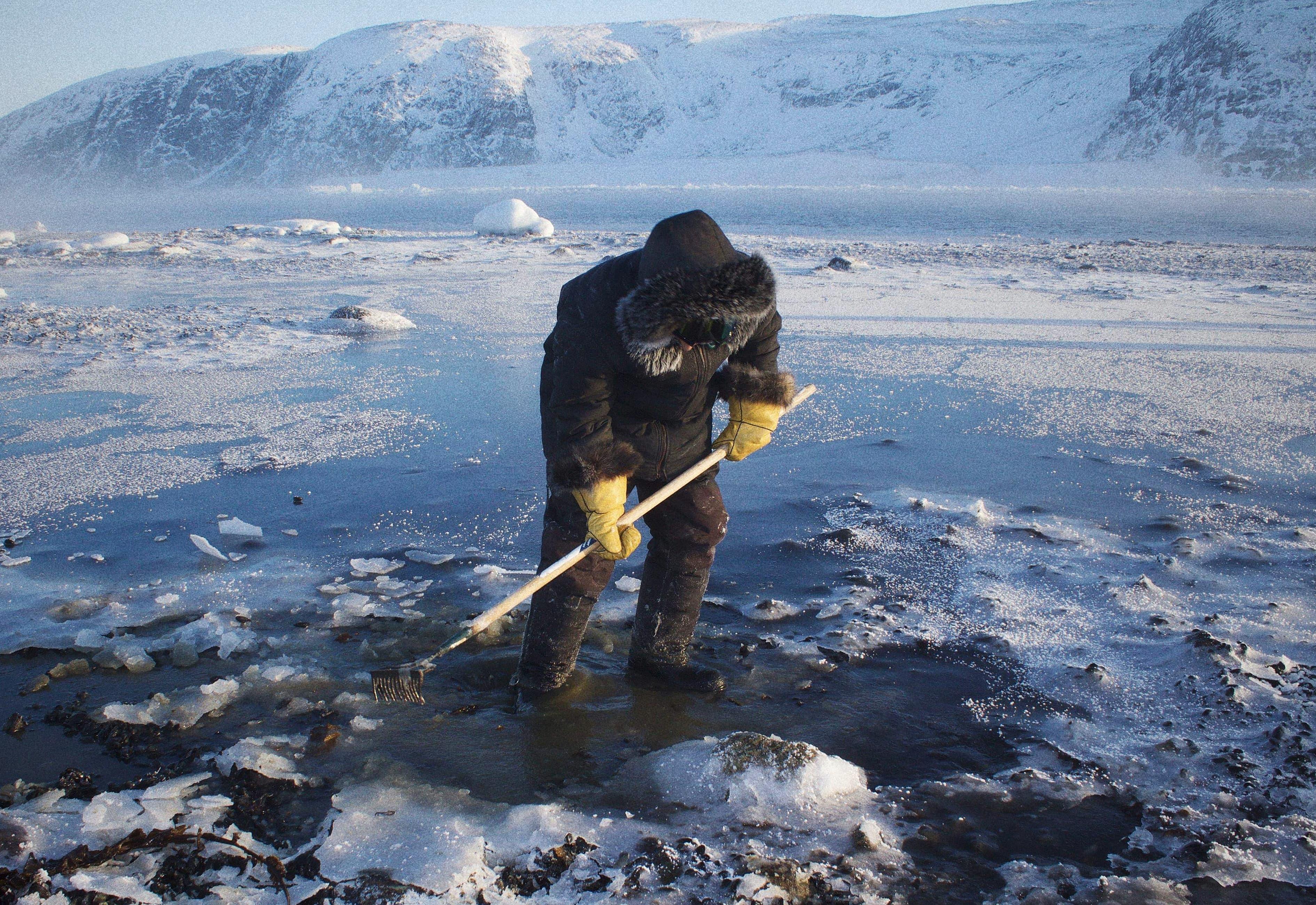 Un homme pêche des moules à proximité du village de Salluit, au Nunavik.