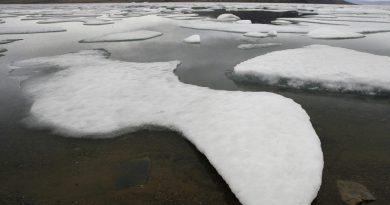La fonte des glaciers permettrait l'absorption de CO2, selon une étude