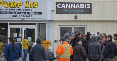 Légalisation du cannabis : la situation un an plus tard au Yukon, dans le Nord canadien