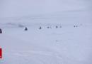 Une exposition en images sur une expédition militaire dans le Haut-Arctique canadien