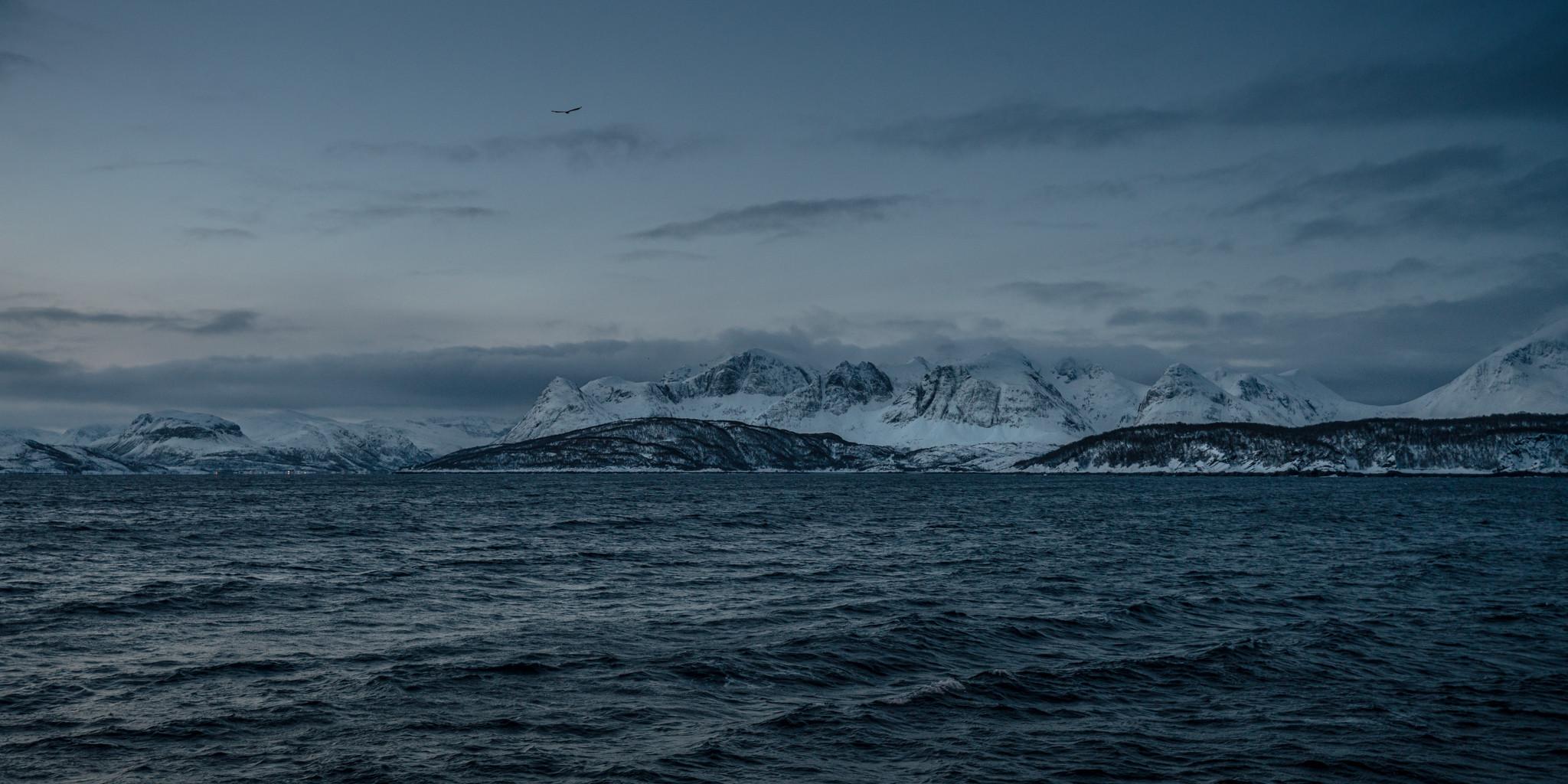 les montagnes enneigées dans les fjords du nord de la Norvège