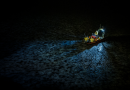La pollution lumineuse perturberait la vie marine en Arctique