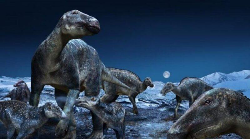 Des dinosaures vivaient et se reproduisaient dans l'Arctique, selon une étude