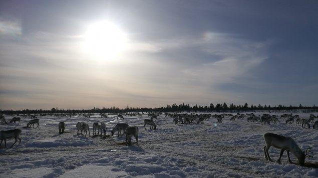 Long format – Construire une ligne ferroviaire dans l'Arctique