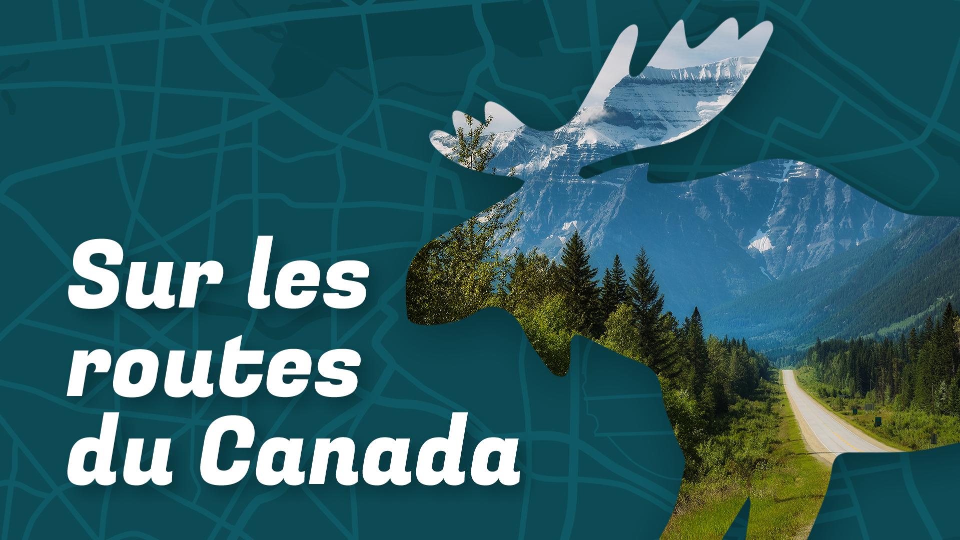 """文字""""在加拿大的道路上"""",伴随着驼鹿的轮廓,驼鹿的轮廓由道路周围的森林景观形成"""