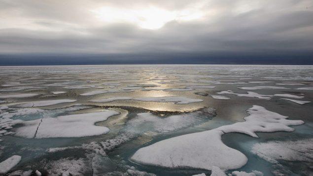北极冰层覆盖40年来第二次少于4百万平方公里